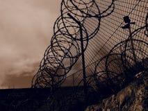 Verrouillé dans une cage Images libres de droits