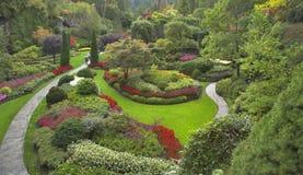 Verrukkelijke tuin. Stock Fotografie