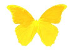 Verrukkelijke vlinder Stock Afbeeldingen