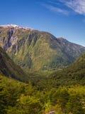 Verrukt Bos - het Nationale Park van Queulat - Carretera Zuidelijk Chili stock afbeelding
