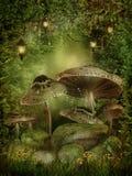 Verrukt bos met paddestoelen Royalty-vrije Stock Afbeeldingen