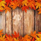 Versé sur les feuilles sèches en bois d'automne Photo stock