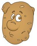 Vers aardappelbeeldverhaal Stock Foto
