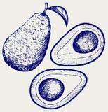 Vers avocadofruit Royalty-vrije Stock Afbeeldingen