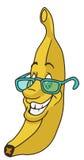Vers banaanbeeldverhaal Stock Afbeelding