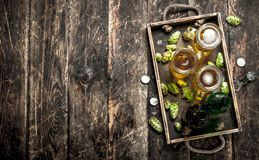 Vers bier in glazen met groene hop op een oud dienblad Stock Afbeeldingen