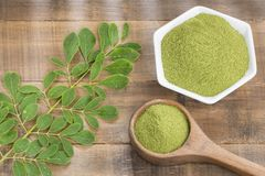 Vers bladeren en moringa poeder - oleifera Moringa Stock Afbeeldingen