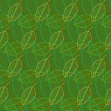 Vers bladeren naadloos patroon in vector Groene gebladerte eindeloze achtergrond stock illustratie