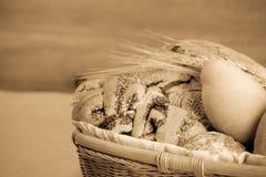 Vers brood Stock Afbeelding