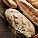 Vers brood Stock Afbeeldingen