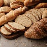 Vers Brood Stock Foto