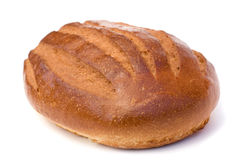 Vers brood stock fotografie