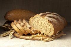 Vers brood met graangewassen van tarwe stock afbeelding