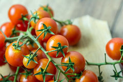 Vers Cherry Tomatoes Royalty-vrije Stock Foto