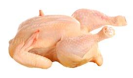 Vers chiken Stock Foto