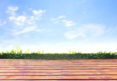 Vers de lente groen gras met groene bokeh Royalty-vrije Stock Foto