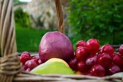Vers de zomer sappig fruit De kleurrijke huisoogst van appelen, peren en druiven in een rieten mand maakte van wijnstok Stock Foto