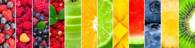 Vers die fruit en bessen van watermeloen, ananas, kiwi, bosbes, mango, kalk, sinaasappel, appel, aardbei wordt gemengd vector illustratie