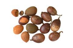 Vers die guapaquefruit op witte achtergrond wordt geïsoleerd Stock Fotografie