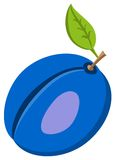 Vers die Violet Plum Fruit With Bright Green-Blad op Witte Achtergrond wordt geïsoleerd Stock Foto