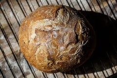 Vers eigengemaakt die brood van zuurdesem wordt gemaakt die op een draadrek rusten Artisanaal brood met gouden knapperige korst royalty-vrije stock afbeelding