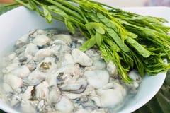Vers en de heerlijke zeevruchten van de oester Stock Fotografie