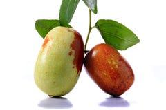 Vers en rijp jujubefruit stock afbeeldingen