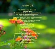 Vers för psalm 23 med den nätta lantanaen blommar i bakgrund royaltyfri fotografi