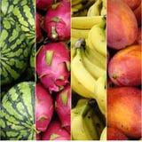 Vers fruit Royalty-vrije Stock Afbeeldingen