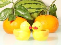 Vers fruit en grappige eend Stock Foto