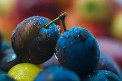 Vers fruitpruimen en appelen Royalty-vrije Stock Foto's