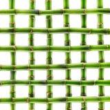 Vers geïsoleerd bamboe Royalty-vrije Stock Foto's