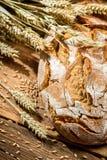 Vers gebakken brood van brood stock afbeelding