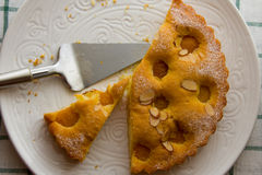 Vers gebakken eigengemaakte abrikozenpastei Stock Afbeelding