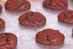 Vers gebakken, eigengemaakte chocoladekoekjes nog op de pan Royalty-vrije Stock Fotografie