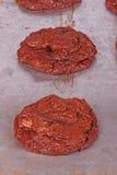 Vers gebakken, eigengemaakte chocoladekoekjes nog op pan vert Royalty-vrije Stock Foto