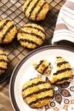 Vers gebakken en warme kokosnotenmakarons op een plaat stock fotografie