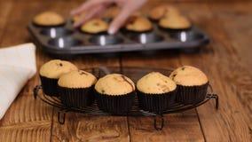 Vers gebakken muffins bij het koelen van rek stock videobeelden