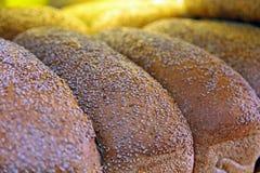 Vers gebakken sesambrood Stock Foto