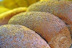 Vers gebakken sesambrood royalty-vrije stock afbeelding