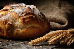 Vers gebakken traditioneel brood stock foto