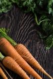 Vers gekweekte wortelen royalty-vrije stock foto's