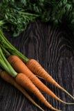 Vers gekweekte wortelen stock afbeelding