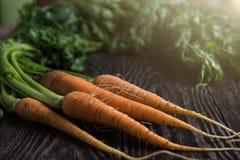 Vers gekweekte wortelen royalty-vrije stock foto