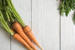 Vers gekweekte wortelen stock fotografie