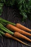 Vers gekweekte wortelen stock afbeeldingen
