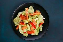 Vers gemaakte plantaardige salade met zalm op zwarte gezonde plaat, stock afbeeldingen