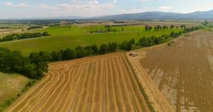 Vers geoogste landbouwgrond stock footage