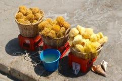 Vers geoogste overzeese sponsen bij een haven op het Eiland Kreta stock fotografie