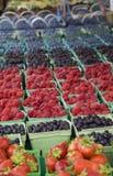 Vers Geplukt Fruit Royalty-vrije Stock Afbeeldingen